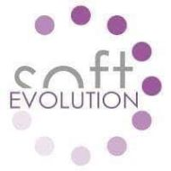 Softevolution Business