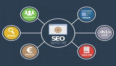 Cómo enfocar tu estrategia SEO para tener mejores resultados en tu negocio online